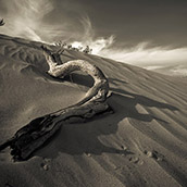 Mesquite Flat Sand Dunes in Death Valley National Park, CA at sunrise.  Landscape Photograpy by Alex Wilson.